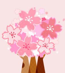 행운의 벚꽃 찾기