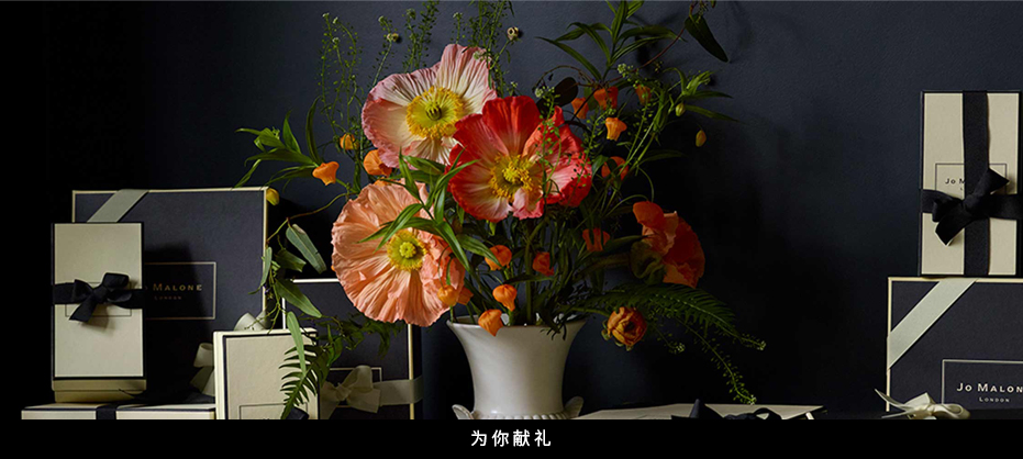 2020060992911HDC_CN_Main_03.jpg